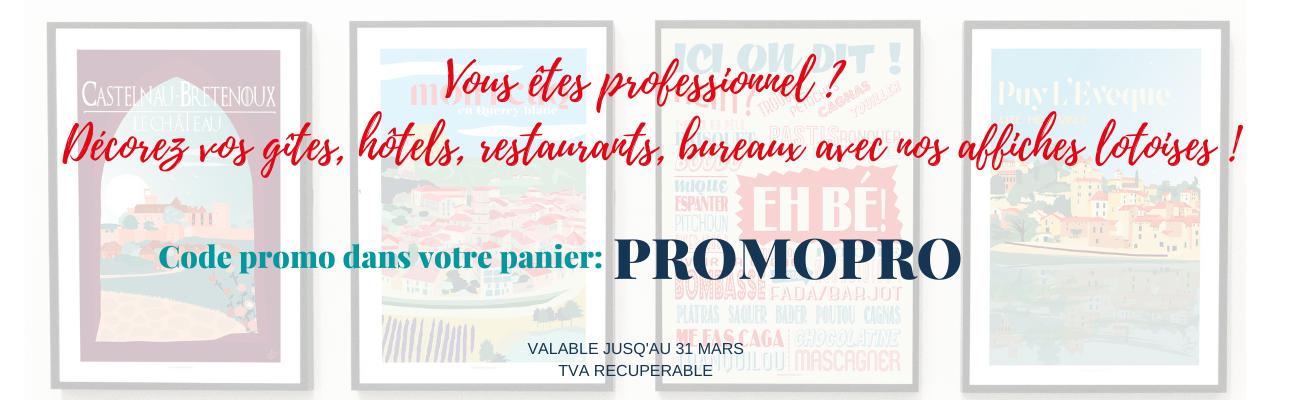 Vous êtes professionnel _ Décorez vos gîtes, hôtels, restaurants, bureaux avec nos affiches lotoises !